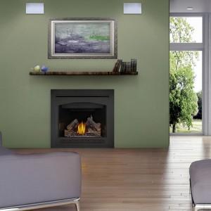 Monessen and Napoleon Gas Fireplaces