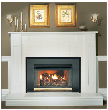 valor view house inserts fireplace b gas fire insert the