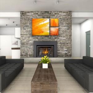 Heat Efficient Gas Fireplace Inserts Boston Sudbury Ma