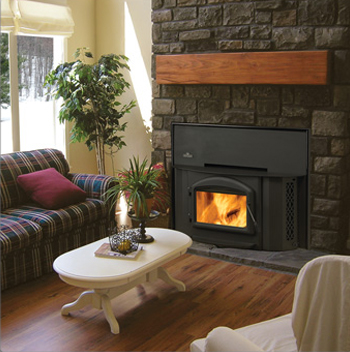Wood Burning Fireplace Inserts, Firebox - Heat Efficient ...